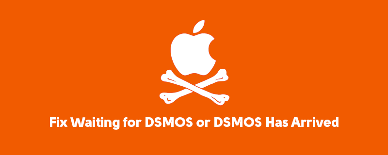How to Fix Waiting for DSMOS or DSMOS Has Arrived – Hackintosh image