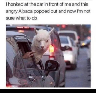 We all have seen someone like this in traffic